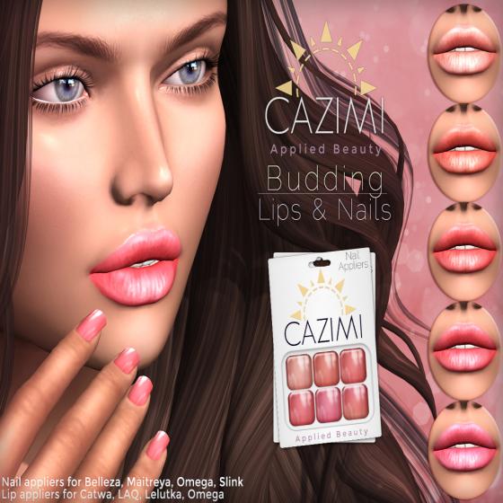 CAZIMI Budding Ad_4X3